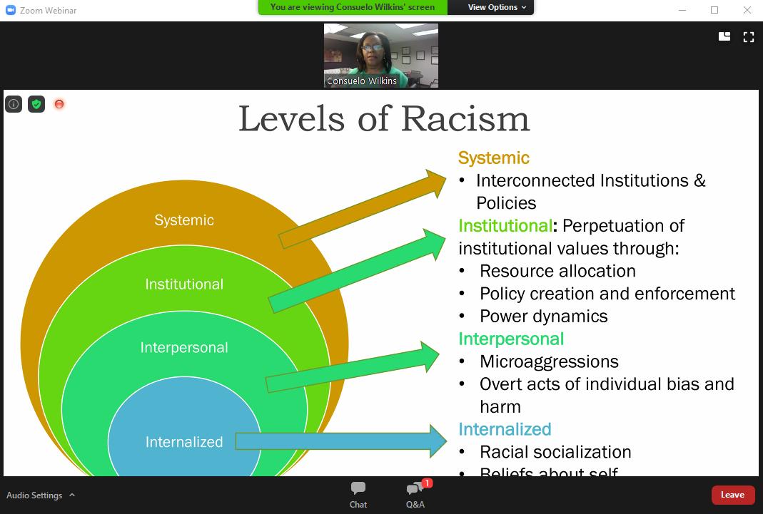 Consuelo Wilkins' presentation