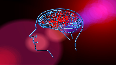 image of a human head and brain